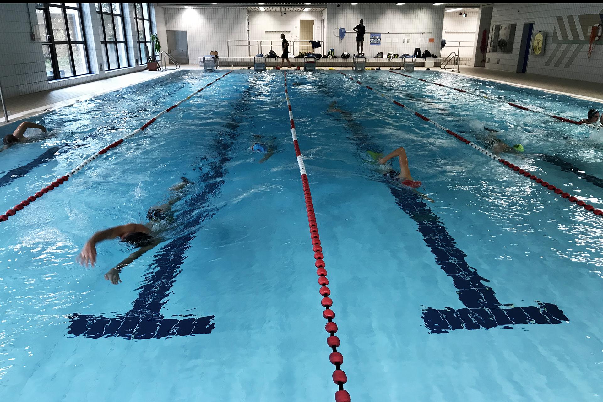 SUGAR & PAIN SWIMINAR / Genügend Platz für alle Schwimmer auf abgetrennten Schwimmbahnen © stefandrexl.com