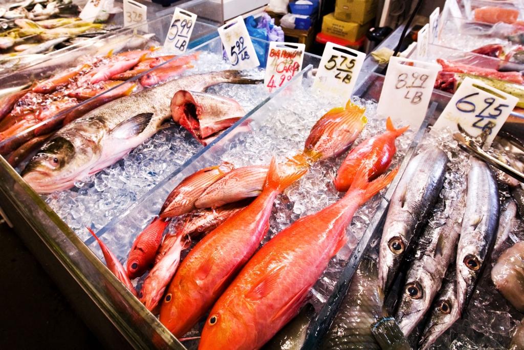 ERNÄHRUNG UND GESUNDHEIT 5 Superfood für gesunde Superkräfte / MEERESFISCHE – DER STRUKTURBILDENDEN PROTEINQUELLEN Meeresfische sind sehr reichhaltig an gesunden Fetten und enthalten wichtige Proteine und Aminosäuren. © stefandrexl.com