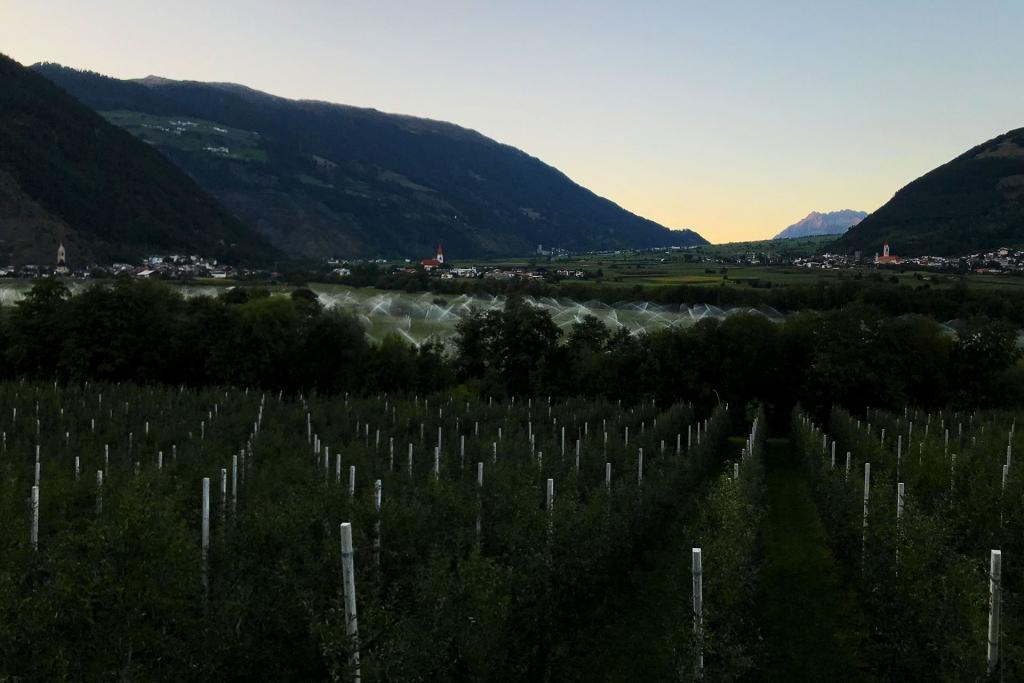 PAPA IS A RIDING STONE Mit dem Rennrad über Stelvio, Sella und Valparola 2 / Das Vinschgau ist frisch im Morgengrauen © stefandrexl.com