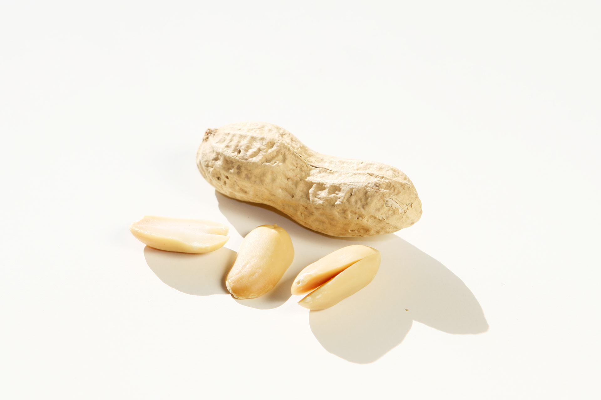 Jetzt gibt's was auf die Nüsse – Gesunde knackige Schnellmacher / Die Erdnuss © stefandrexl.de