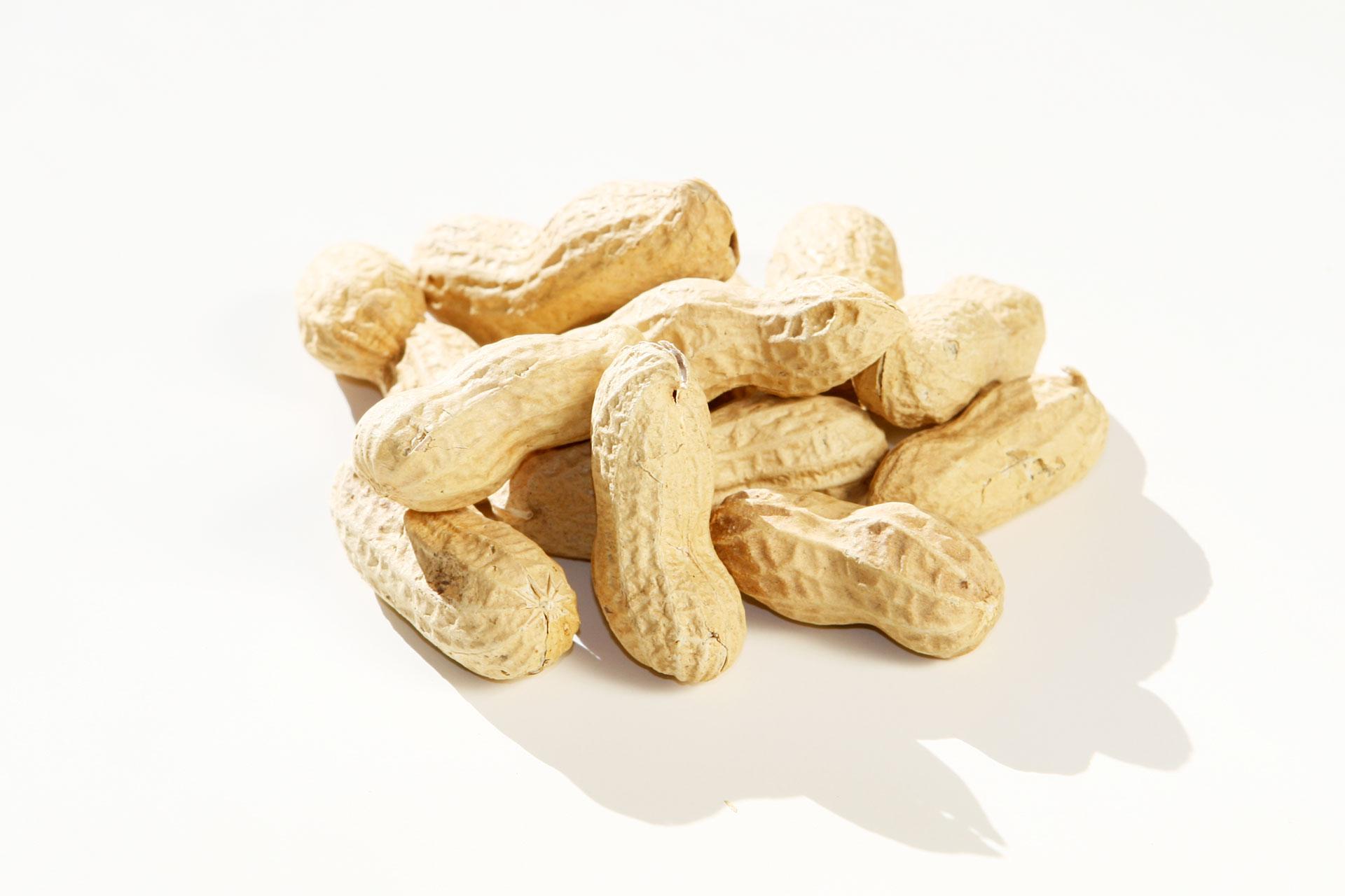 Jetzt gibt's was auf die Nüsse – Gesunde knackige Schnellmacher / Erdnüsse © stefandrexl.de