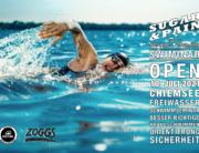 SWIMINAR #OPEN Chiemsee 01/21 Seminar besser im Freiwasser schwimmen / Titel © Stefan Drexl / master1305 / AdobeStock